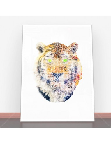 Plakat Biomec Poly Tiger